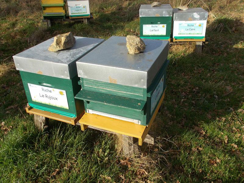 La ruche Le Rujoux