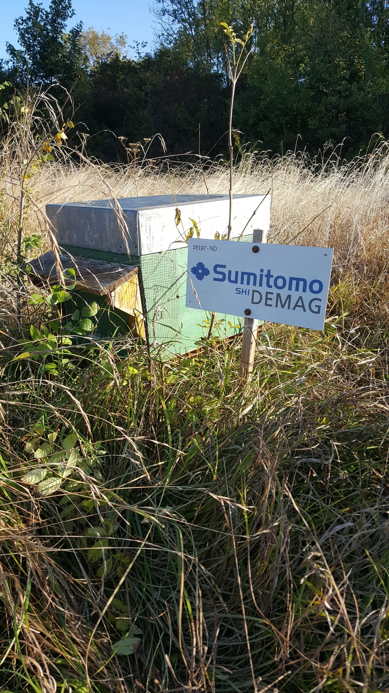 La ruche Sumitomo Demag