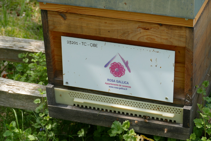 La ruche Rosa Gallica Sarl