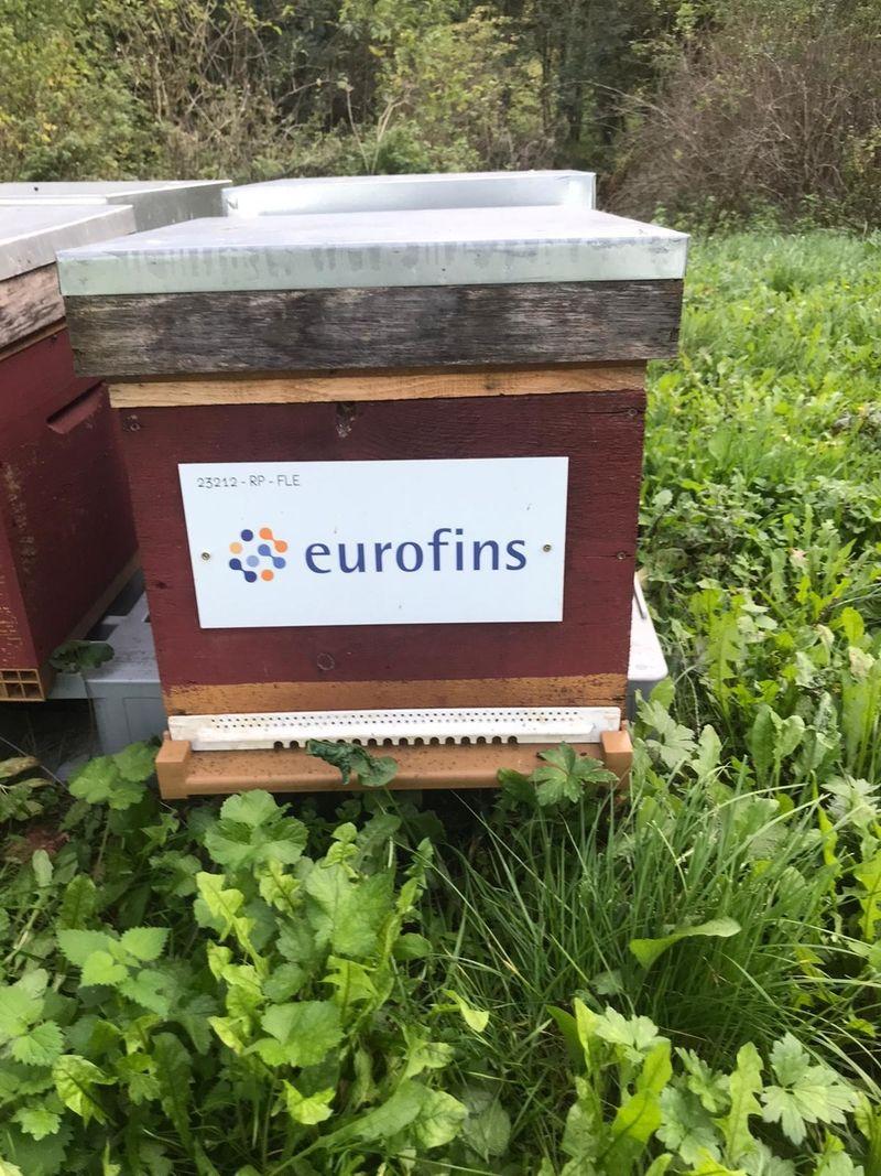 La ruche Laboratoire Eurofins Hénin Beaumont