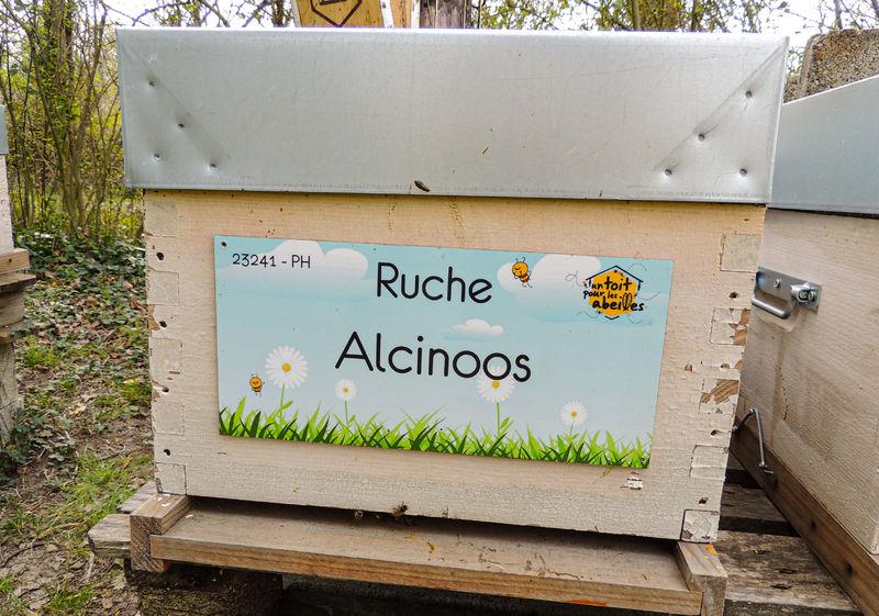 La ruche Alcinoos