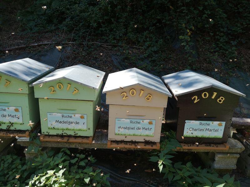 La ruche Madelgarde