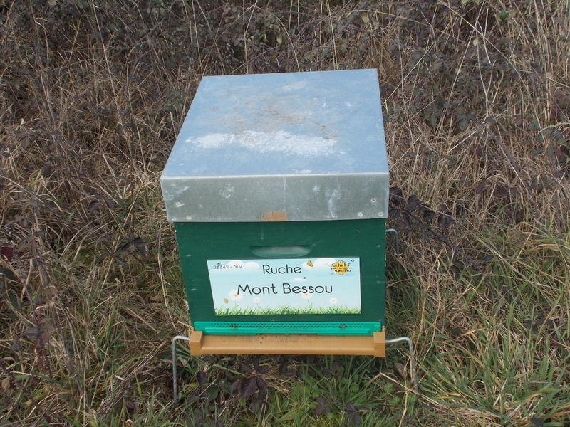 La ruche Mont Bessou