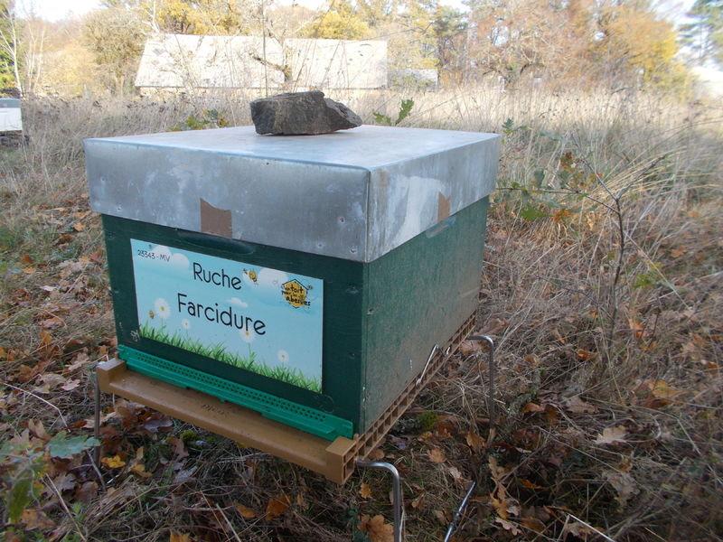 La ruche Farcidure