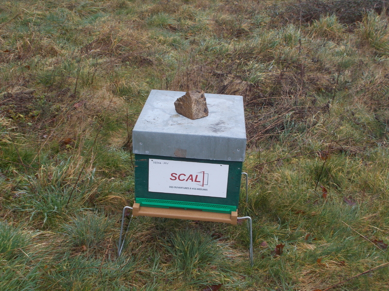La ruche SCAL