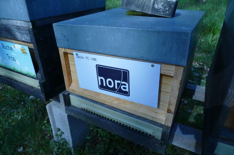 La ruche NORA DISTRIBUTION