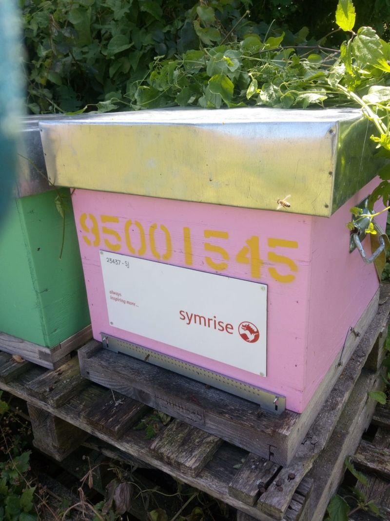 La ruche SYMRISE