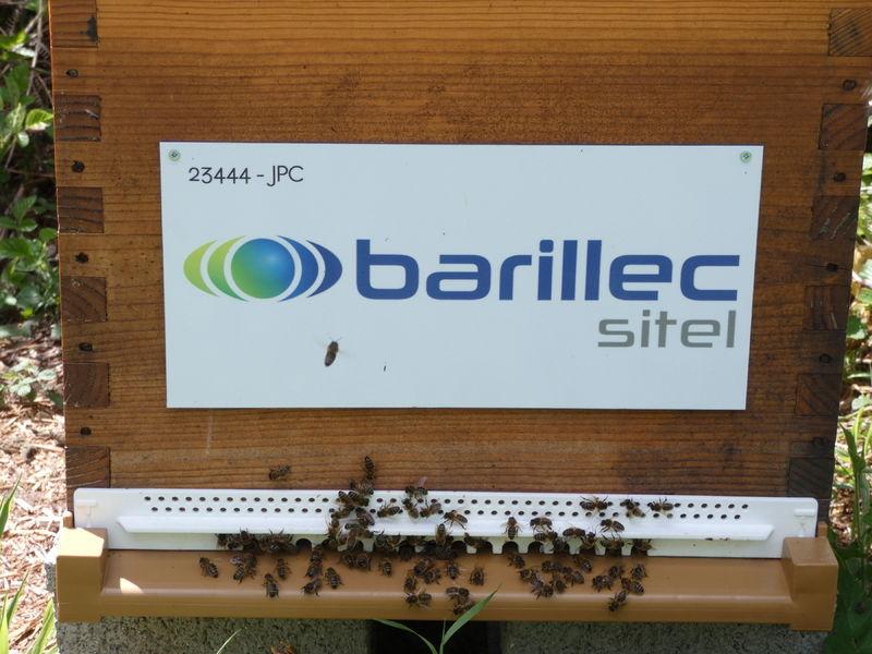 La ruche BARILLEC Sitel