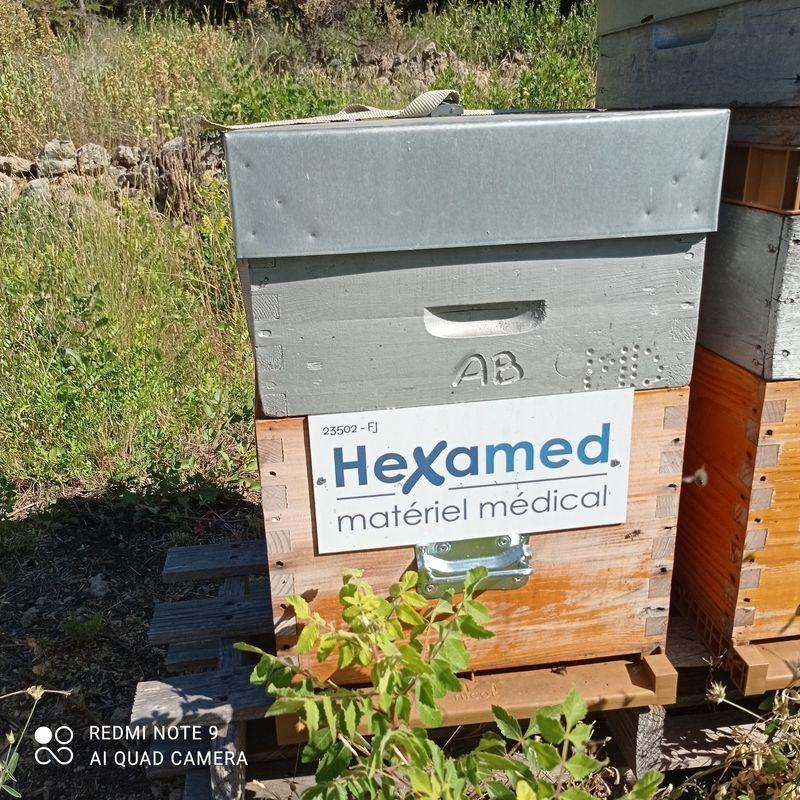 La ruche HEXAMED MATERIEL MEDICAL