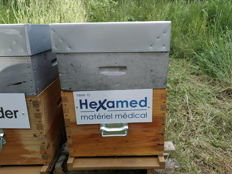 La ruche HEXAMED MATERIEL MEDICAL