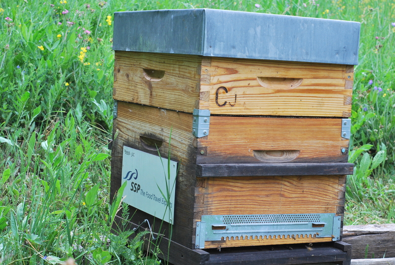 La ruche NET REVIEWS