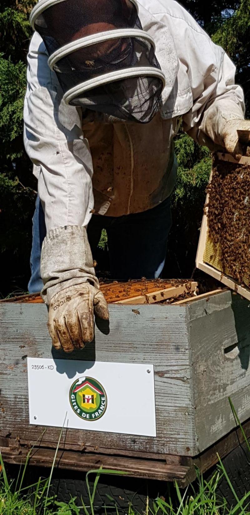 La ruche Gîtes de france finistère