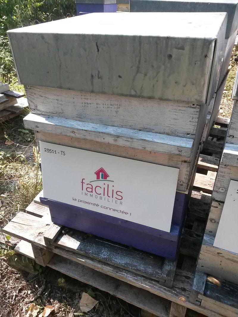 La ruche FACILIS IMMOBILIER