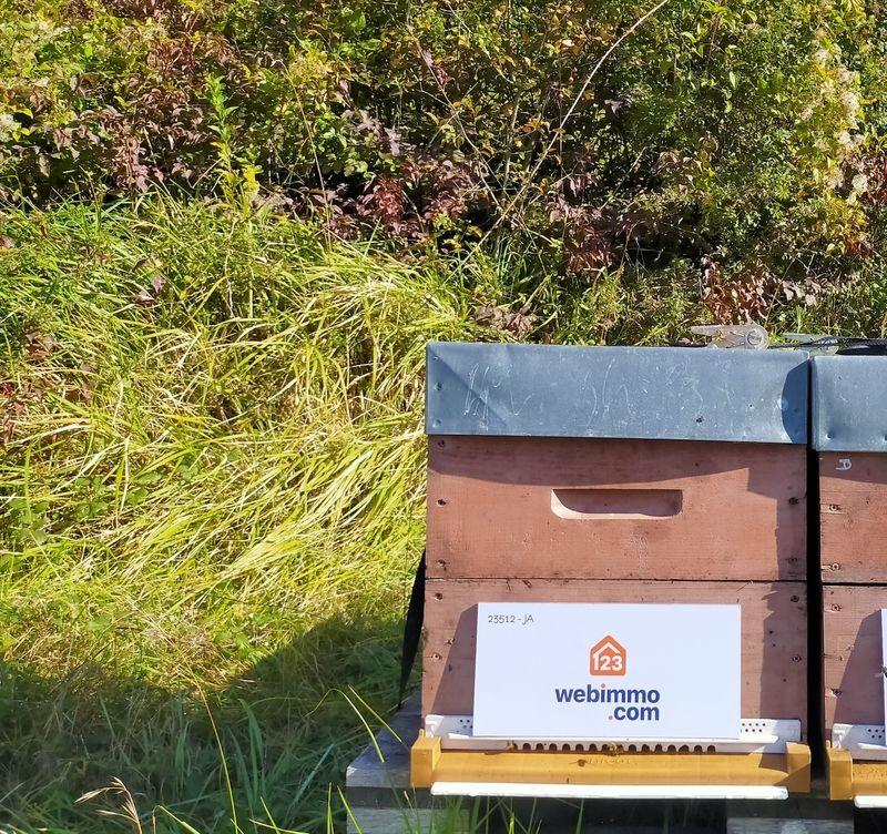 La ruche 123webimmo Sud-Est de Lyon