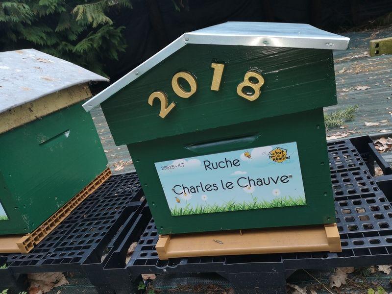 La ruche Charles le Chauve