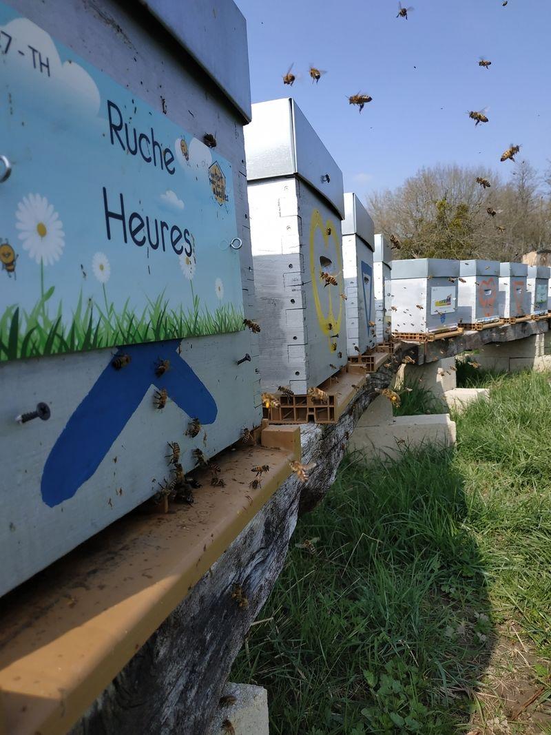 La ruche Heures