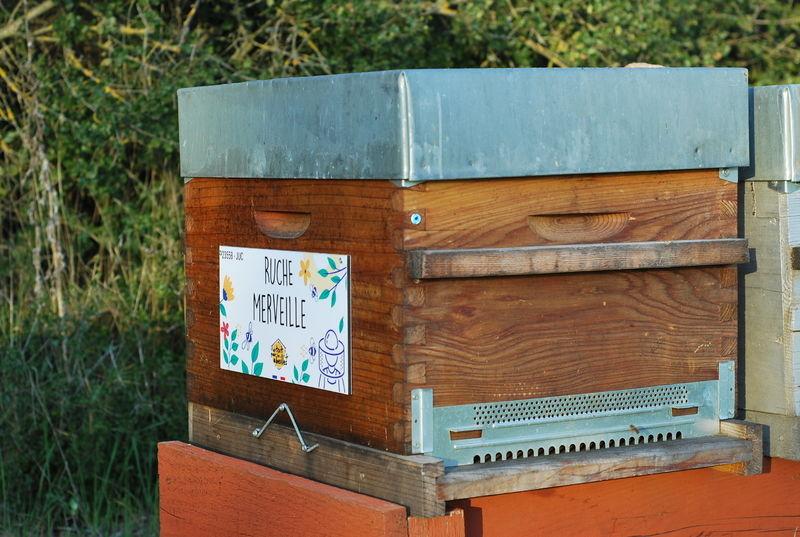 La ruche Merveille