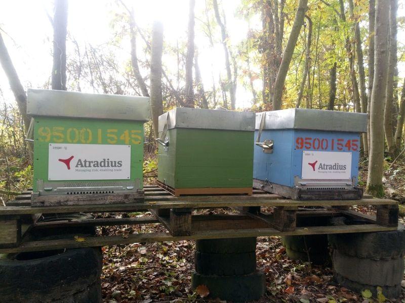 La ruche Atradius Crédito y Caucion SA (Atradius)