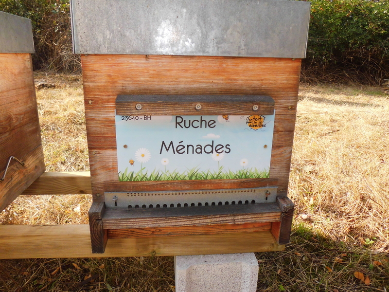 La ruche Ménades