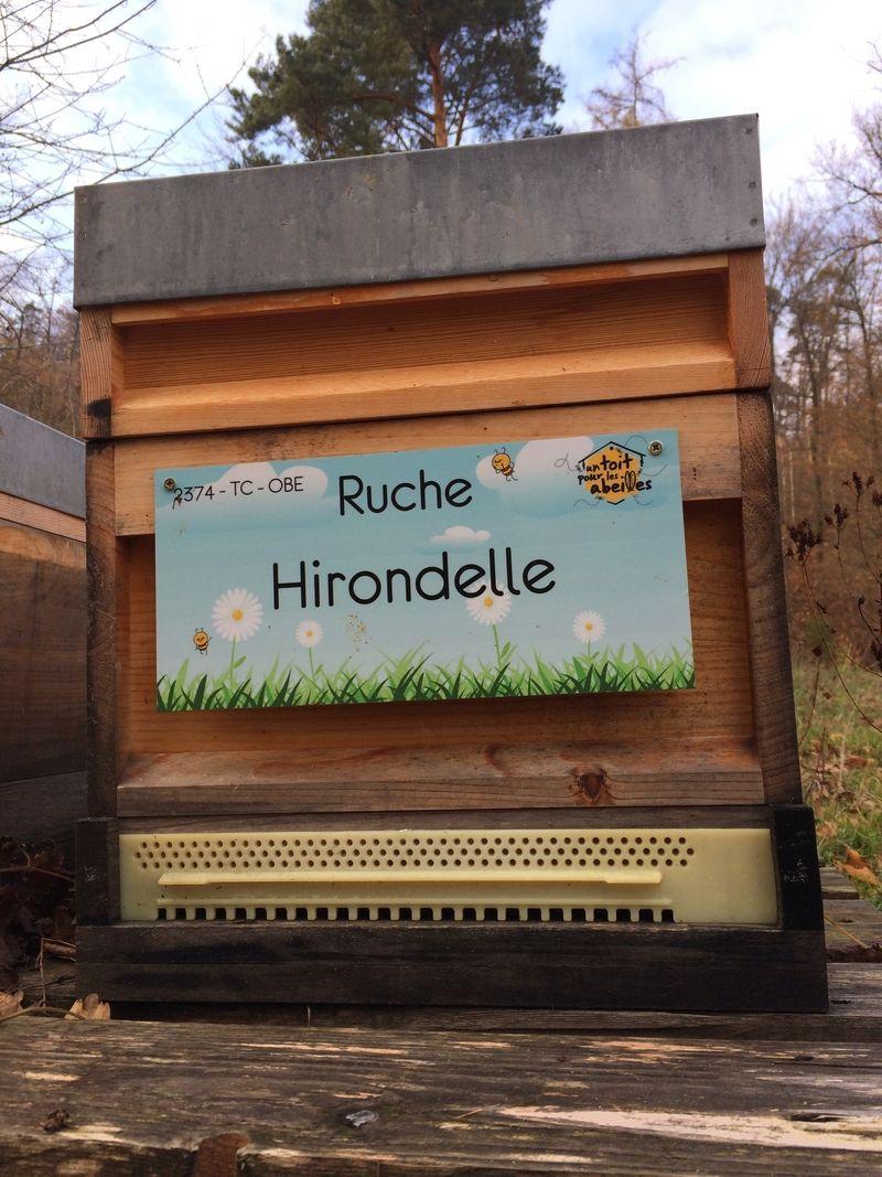 La ruche Hirondelle