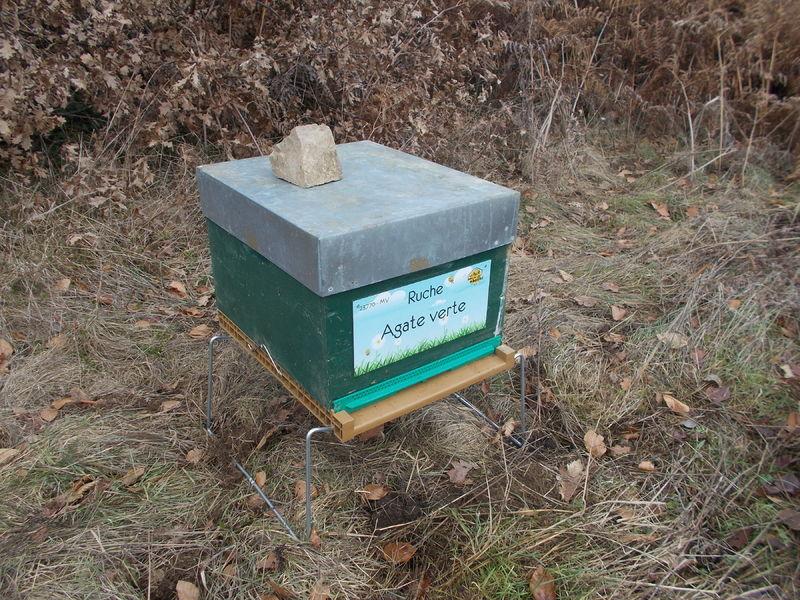 La ruche Agate verte