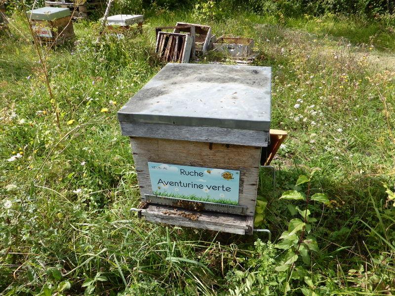 La ruche Aventurine verte