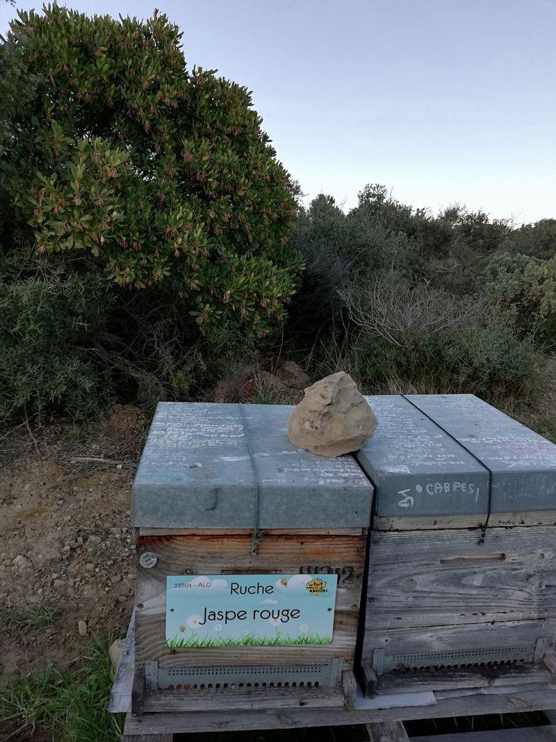La ruche Jaspe rouge
