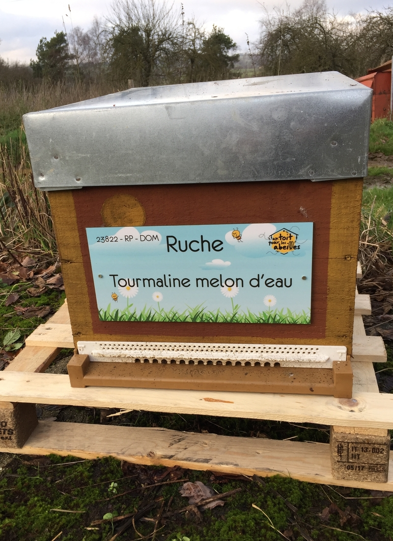 La ruche Tourmaline melon d
