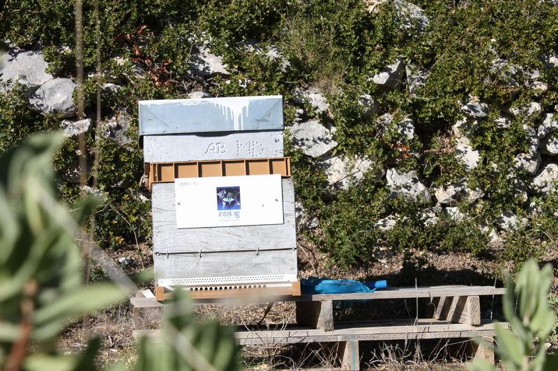 La ruche INTELOG