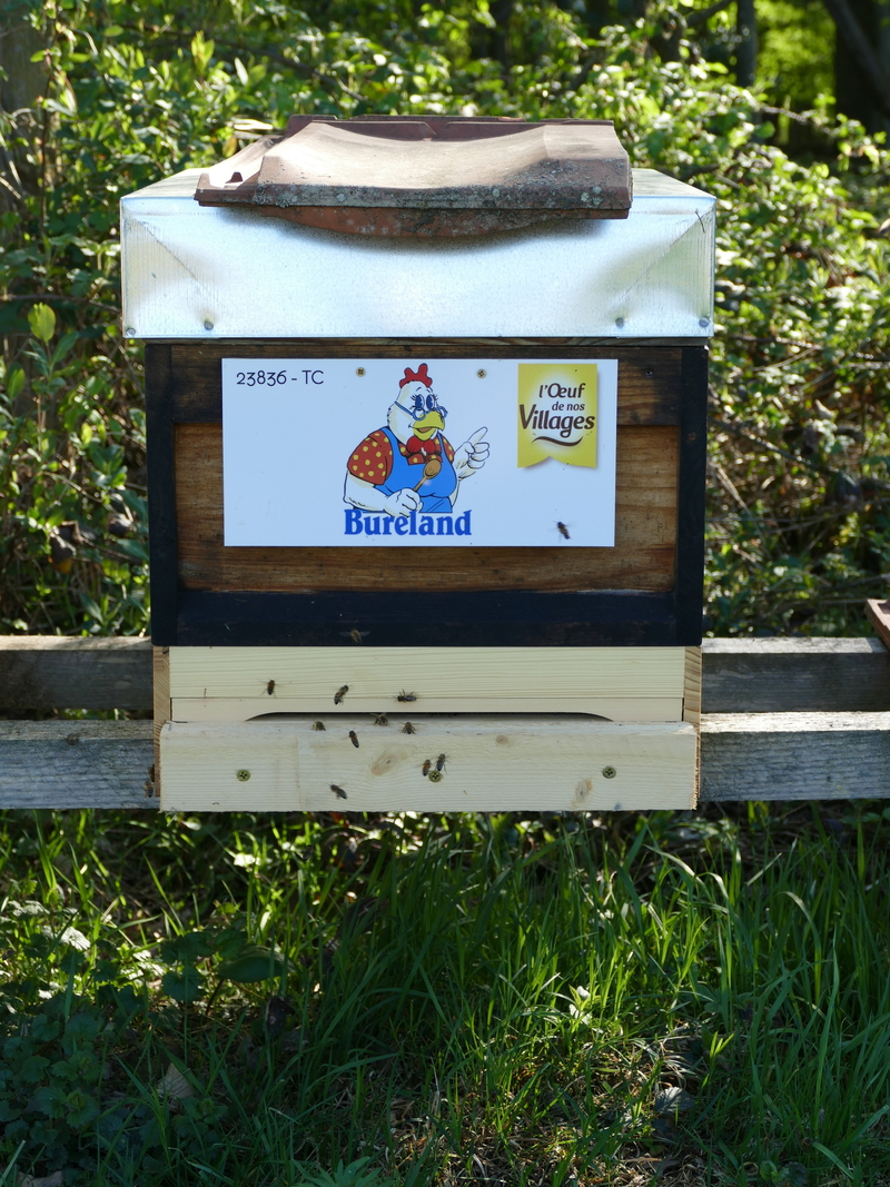 La ruche PRODUCTEURS ALSACIENS