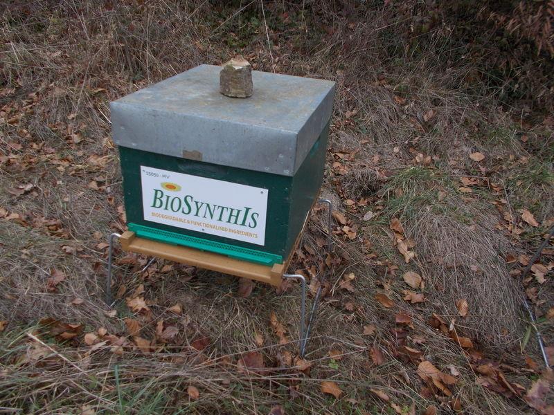 La ruche BIOSYNTHIS