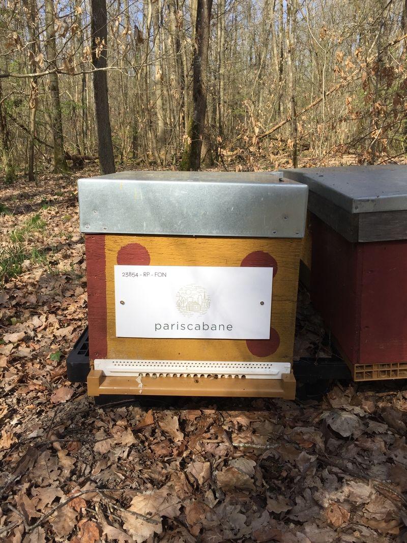 La ruche pariscabane