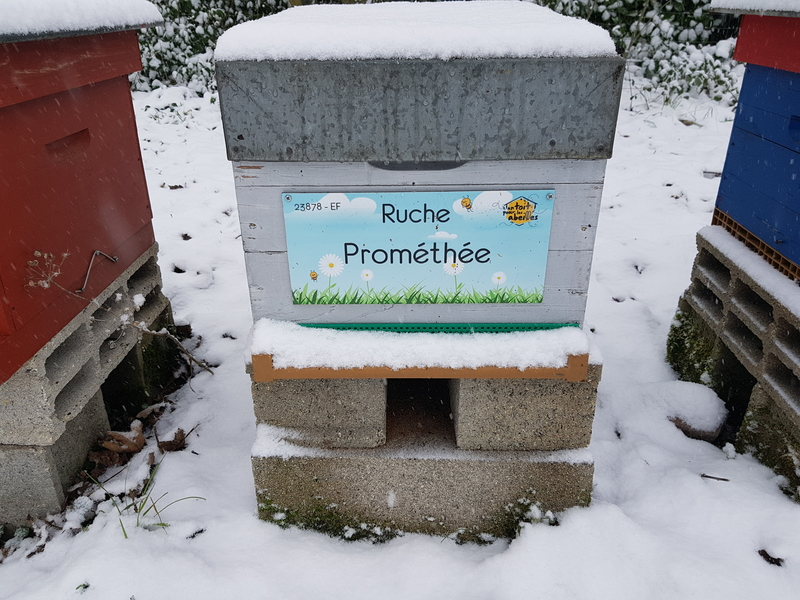 La ruche Prométhée