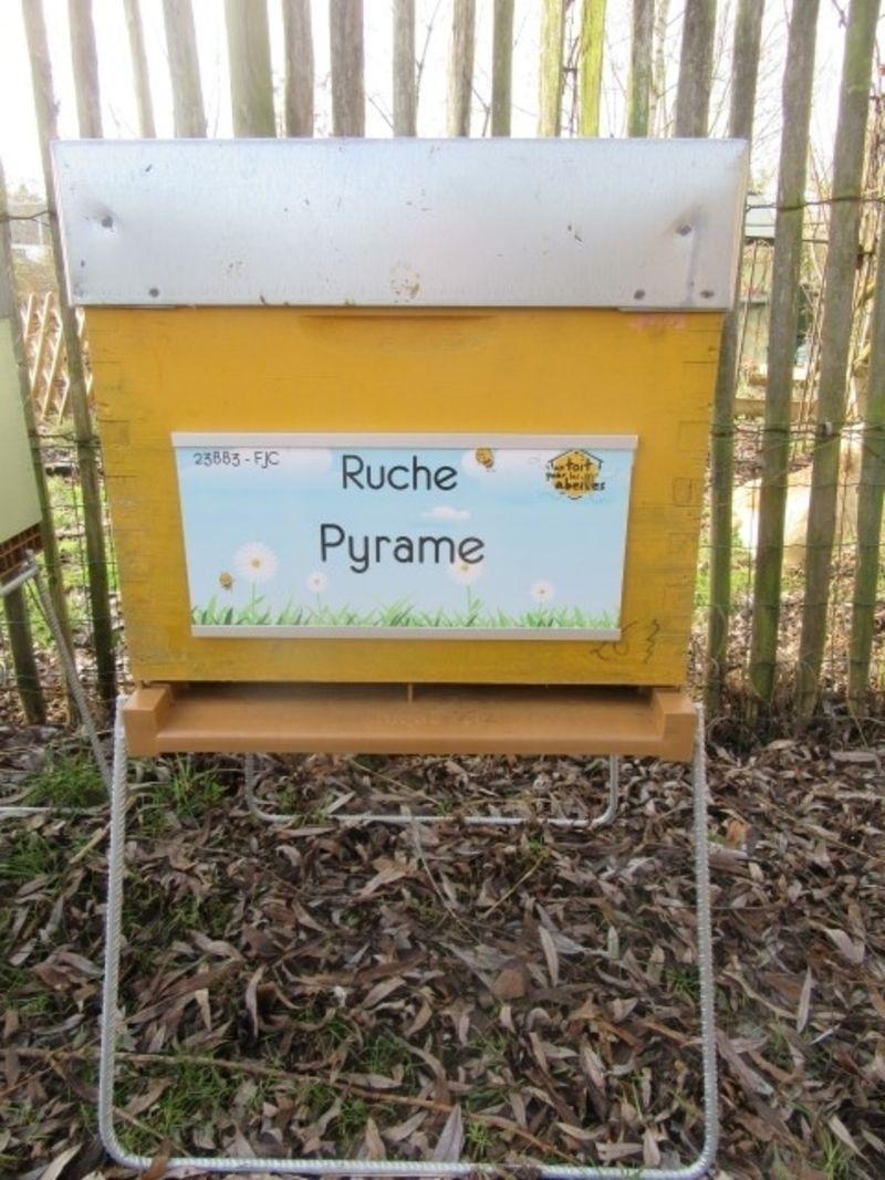 La ruche Pyrame