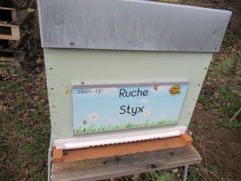 La ruche Styx