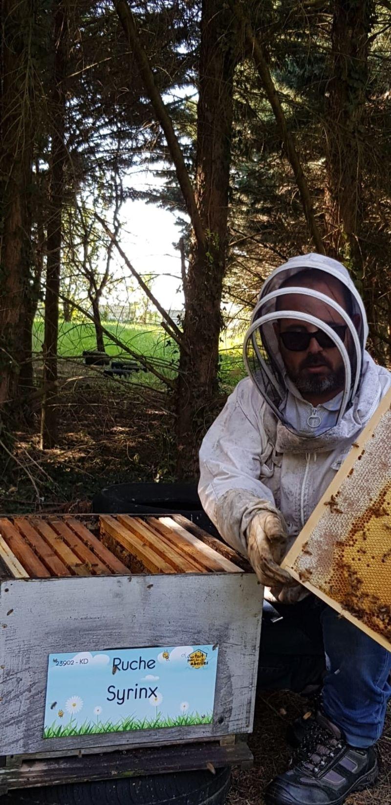 La ruche Syrinx
