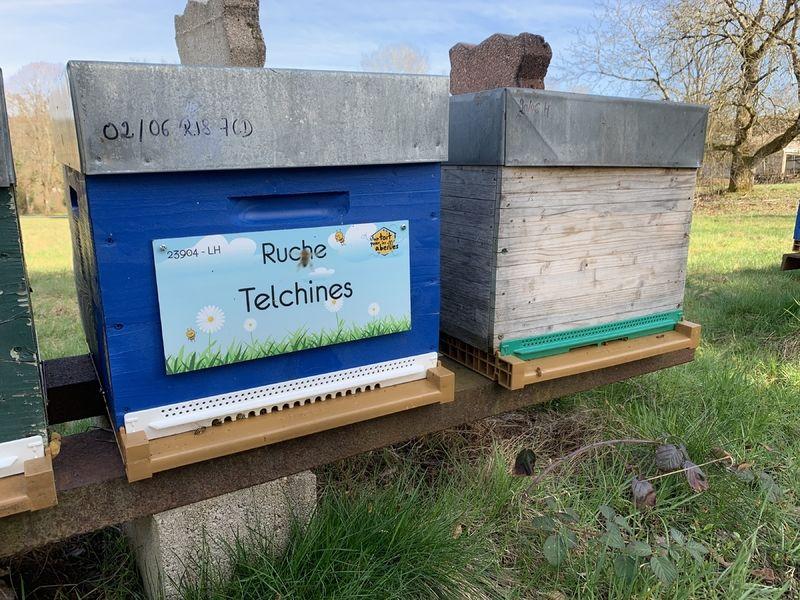 La ruche Telchines