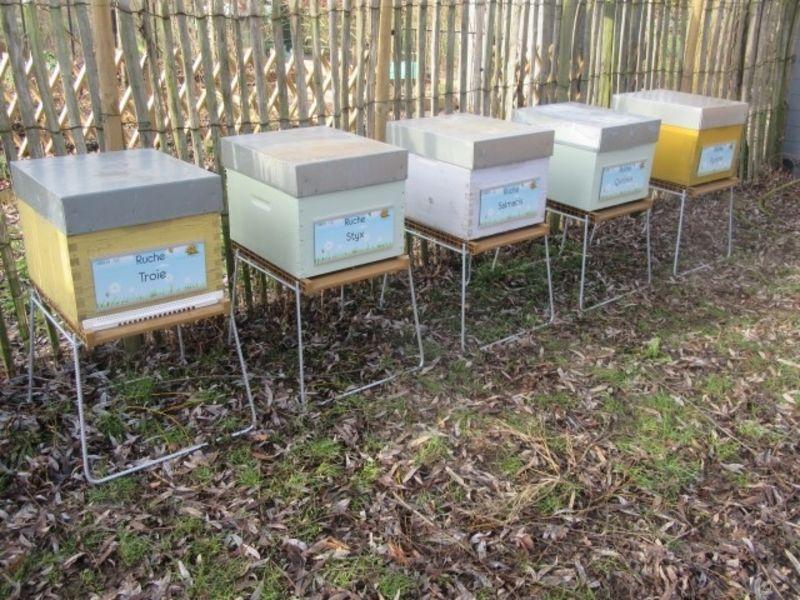 La ruche Troie
