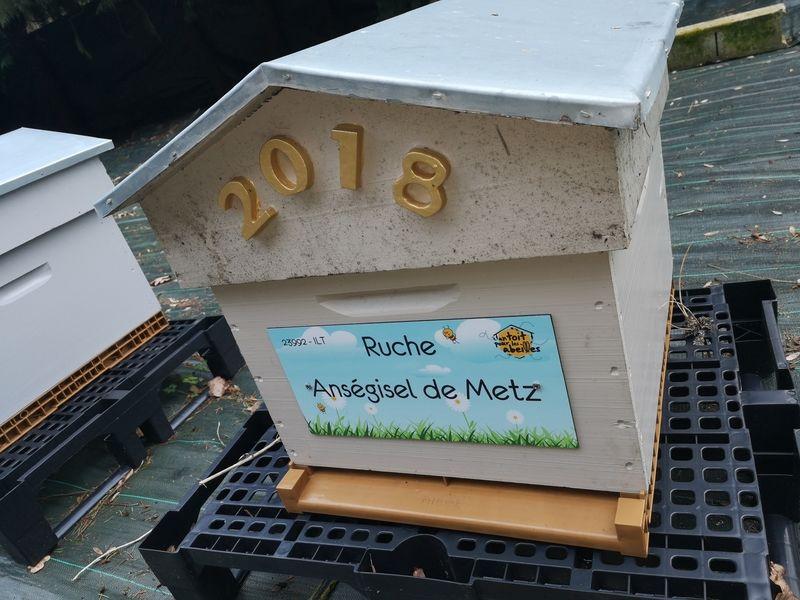 La ruche Anségisel de Metz
