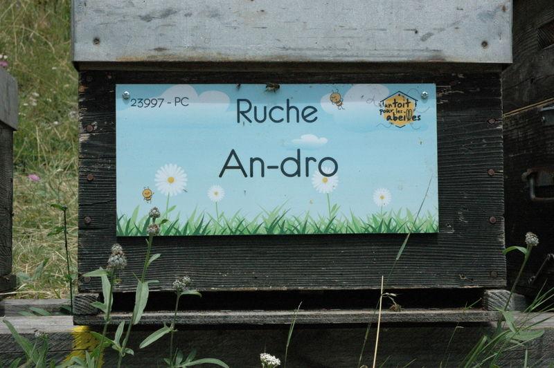 La ruche An-dro