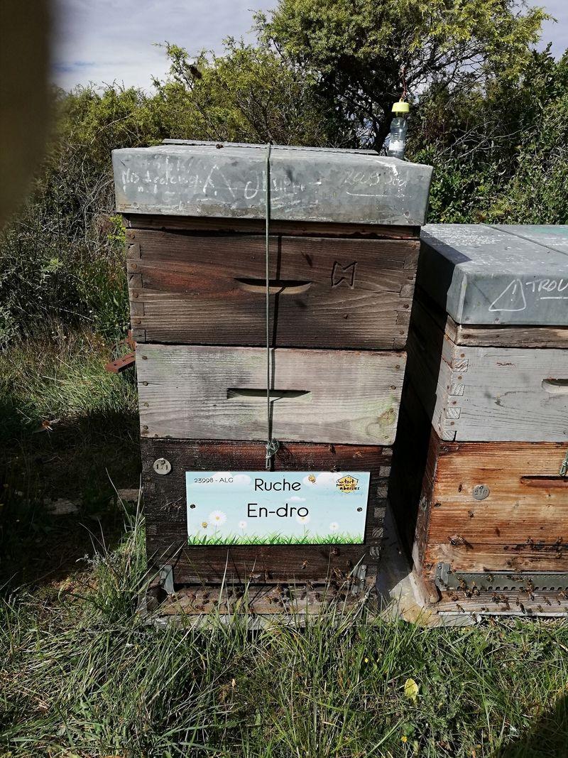 La ruche En-dro