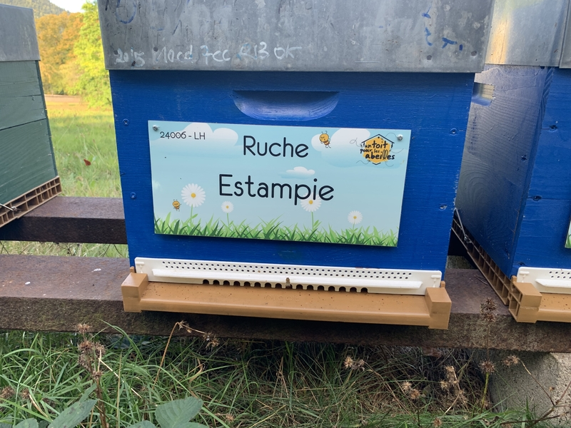 La ruche Estampie