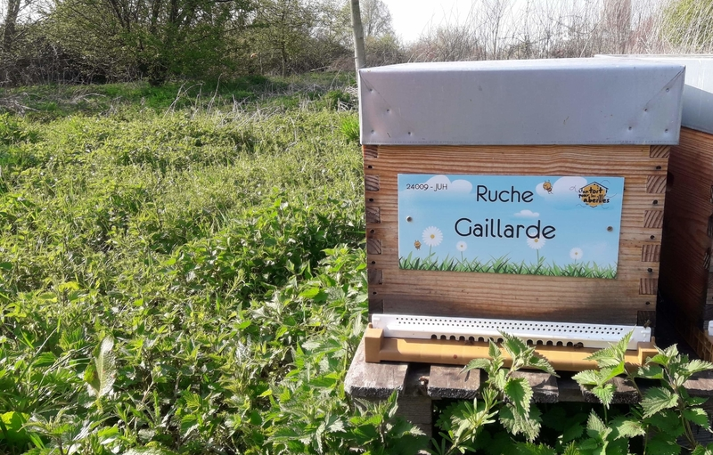 La ruche Gaillarde