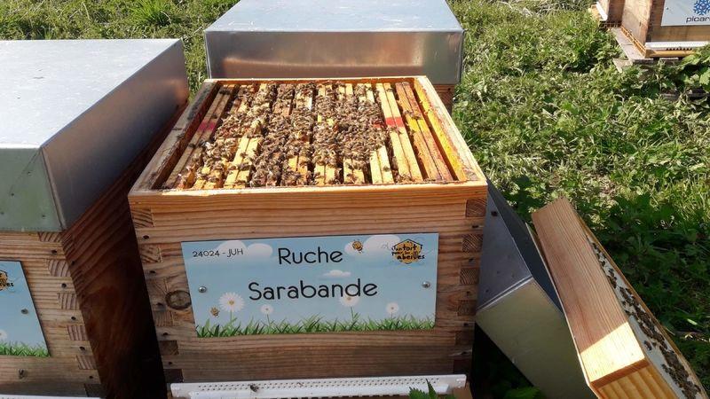La ruche Sarabande