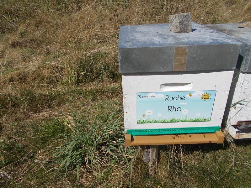 La ruche Rho