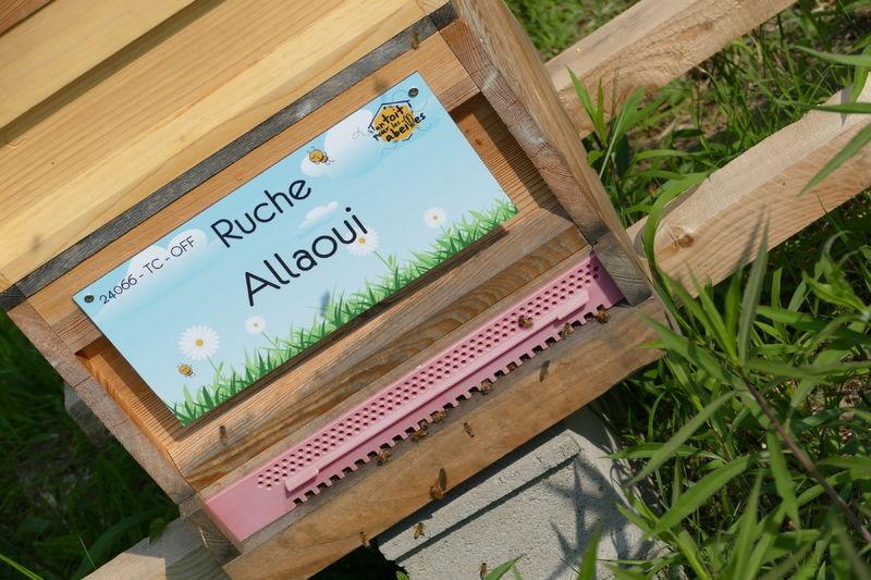 La ruche Allaoui