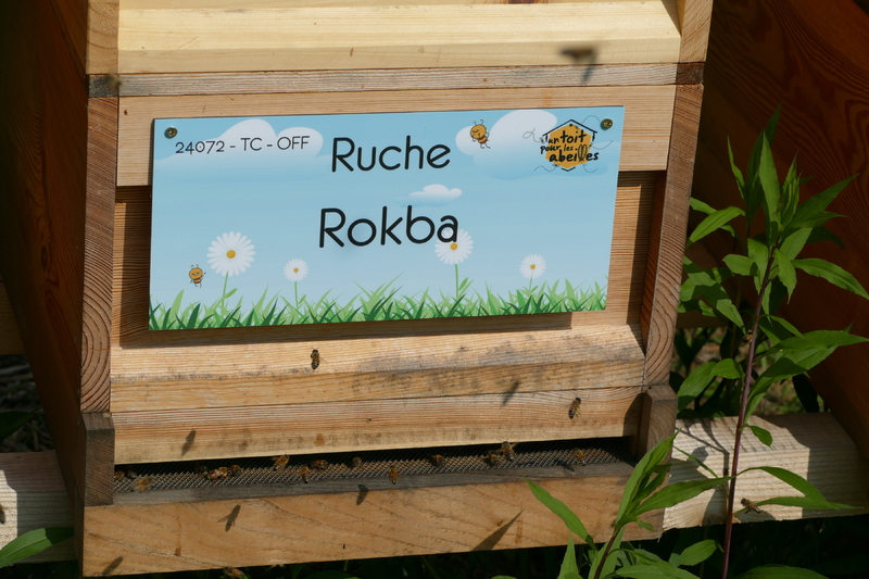 La ruche Rokba