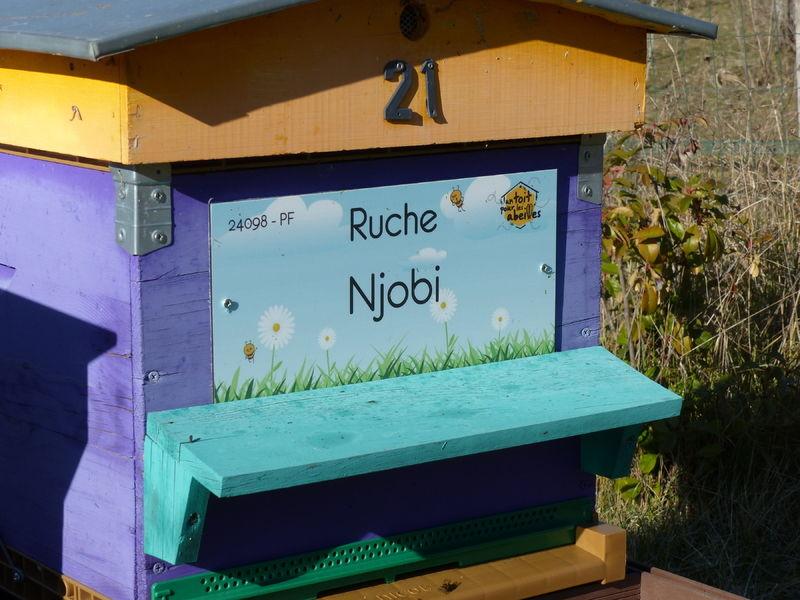 La ruche Njobi