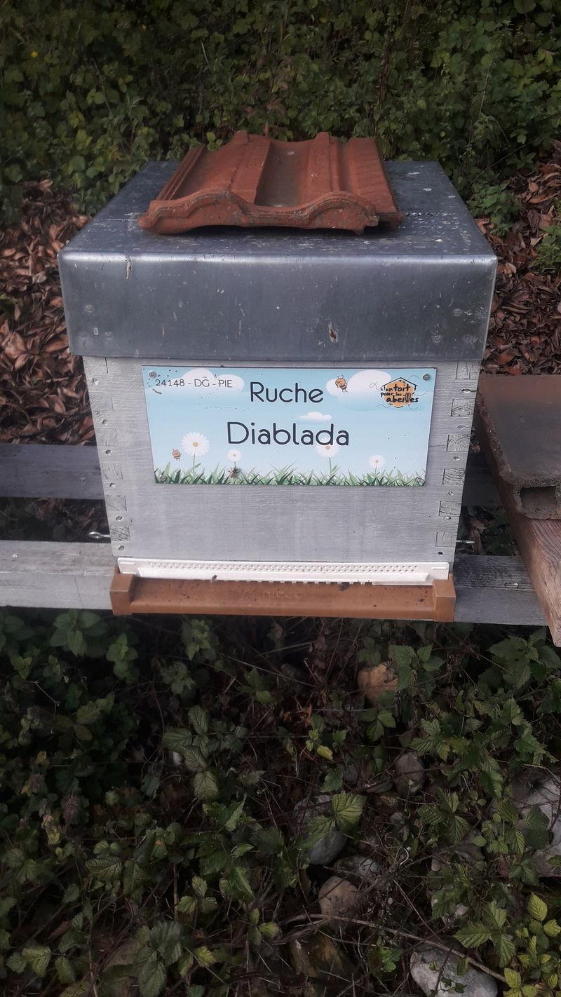 La ruche Diablada