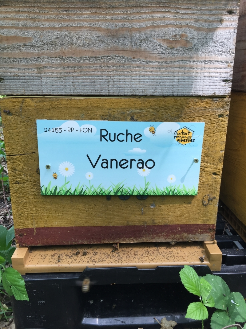 La ruche Vanerao